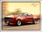 Ford Mustang, Wloty, Powietrza
