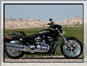 Harley-Davidson Night Rod, Wersja, Chrom