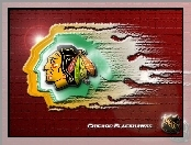 Logo, Chicago Blackhawks, Drużyny, NHL