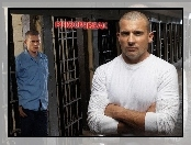 cele, Prison Break, Dominic Purcell, kraty, Wentworth Miller